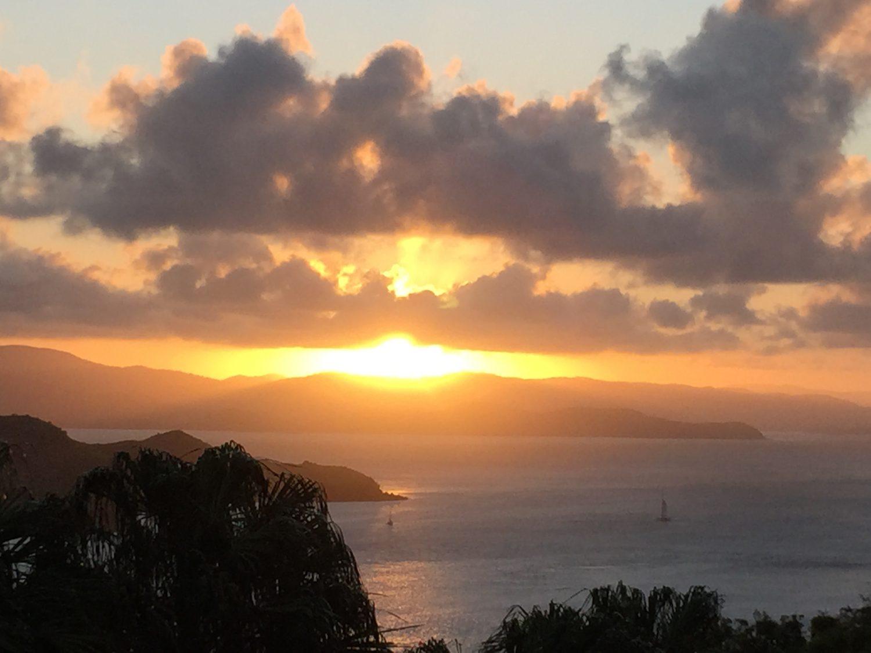 ハミルトン島 クオリア