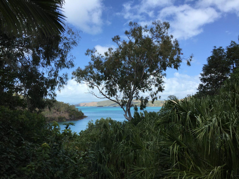 デッキから見たオーシャンビュー ハミルトン島 クオリア