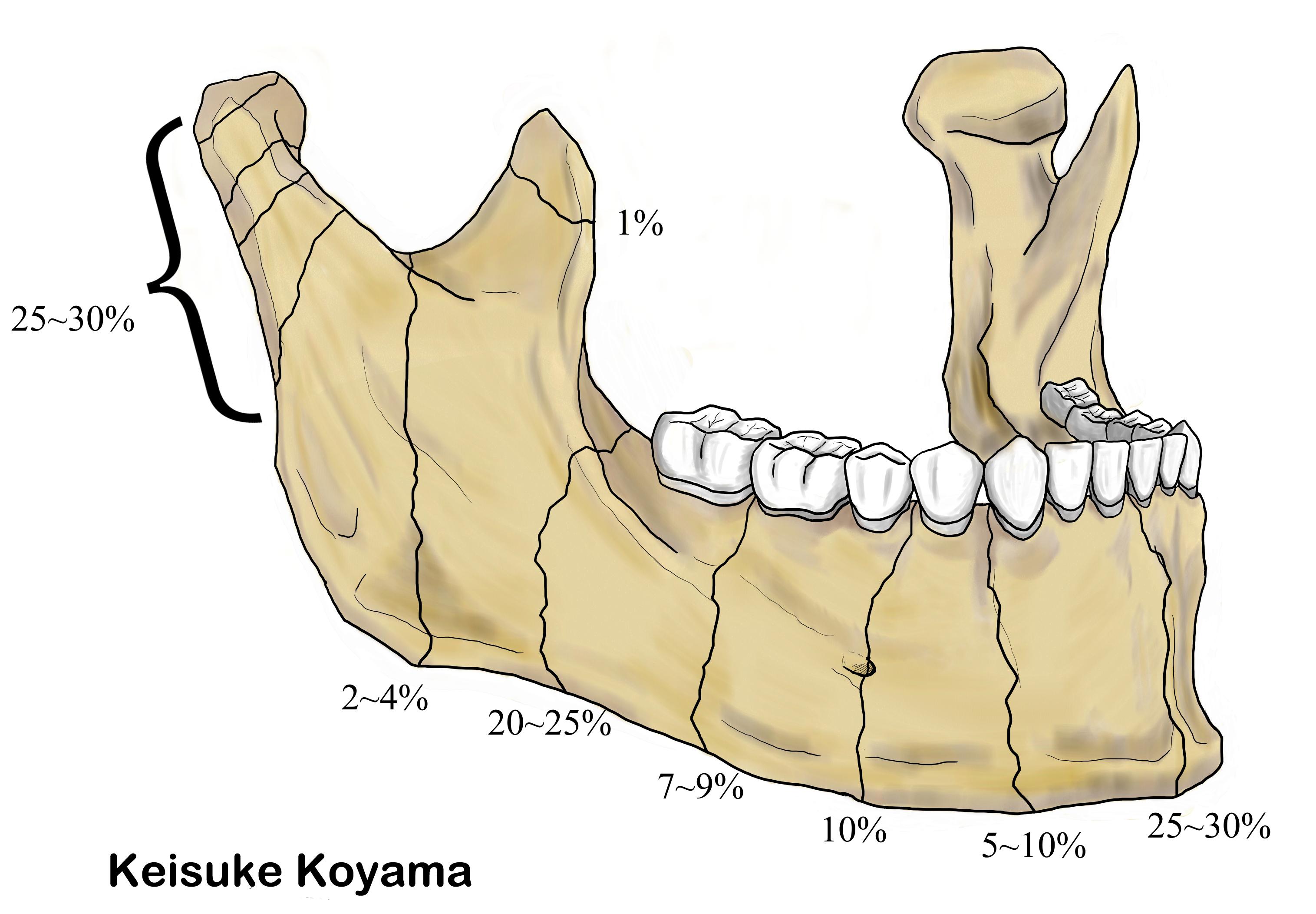 小山慶介イラスト Keisuke Koyama fractures line 1-2