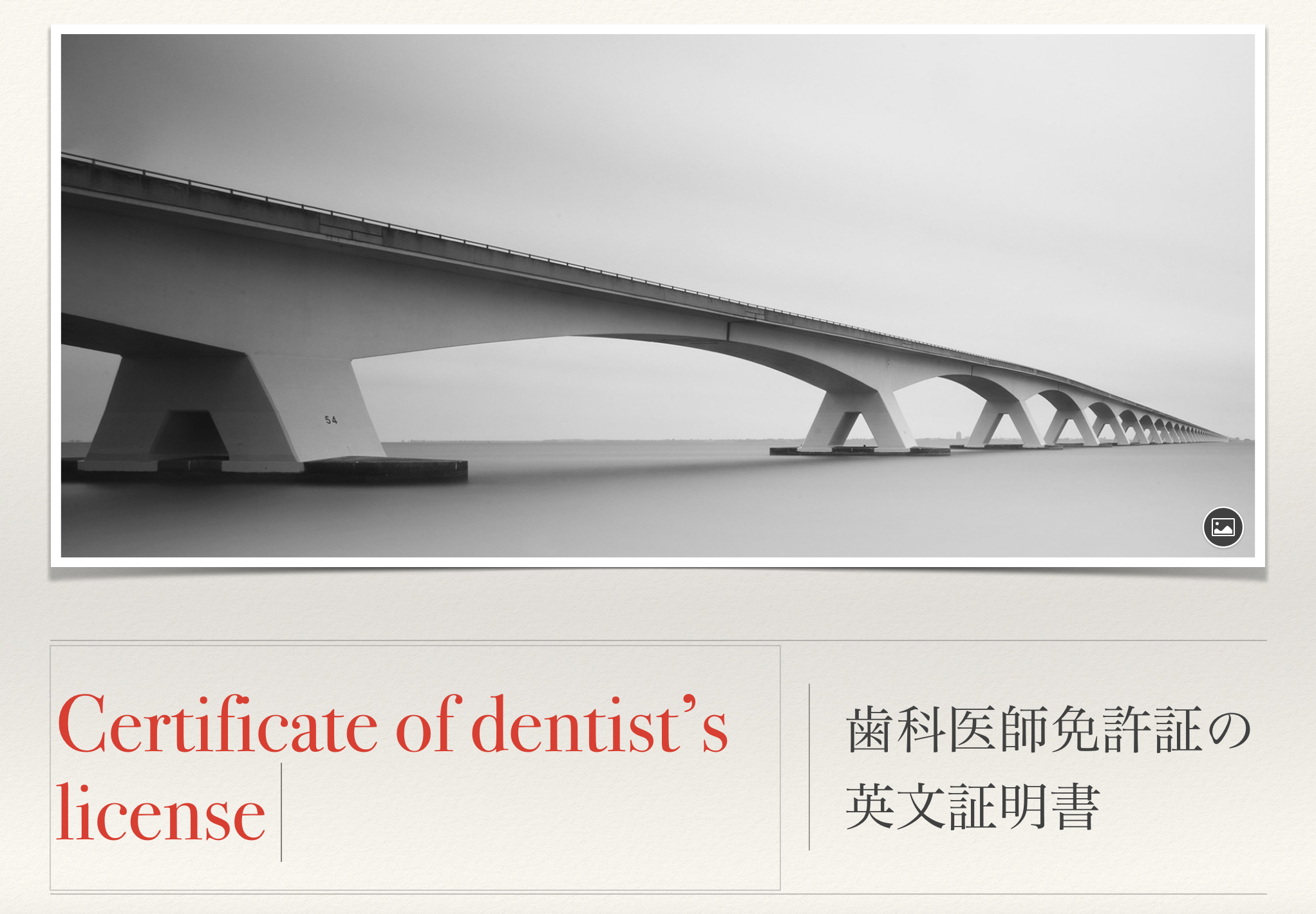 留学時必要書類の用意:歯科医師免許証の英訳書類を作ろう。